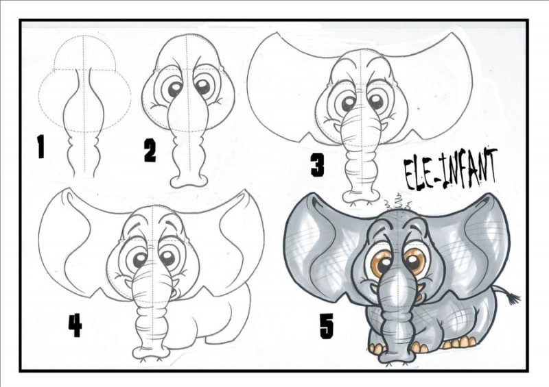 How to draw a baby Elephant - classes by Jarla Duffy, Donegal Cartoons, Ireland